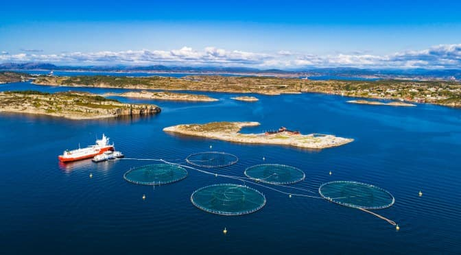 Aquaculture innovation gets a boost in Bergen